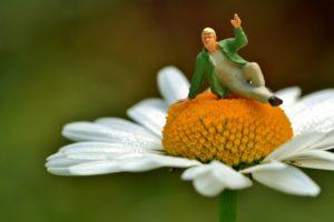 Miniaturfigur auf Margerite